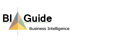 BI-guide Business Intelligence